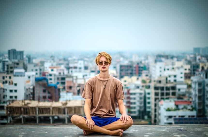 The Whole – a Meditator's Perspective
