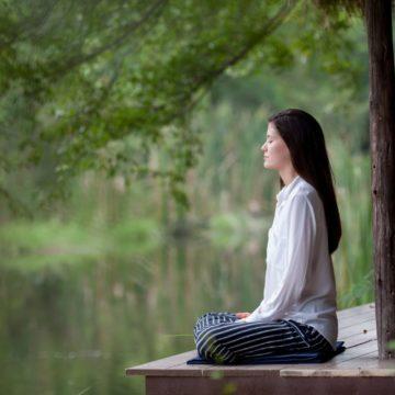 Delightful – a Meditator's Perspective